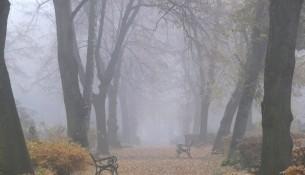 Herbstdepression oder Winterblues - die kalte Jahreszeit ist Schuld...