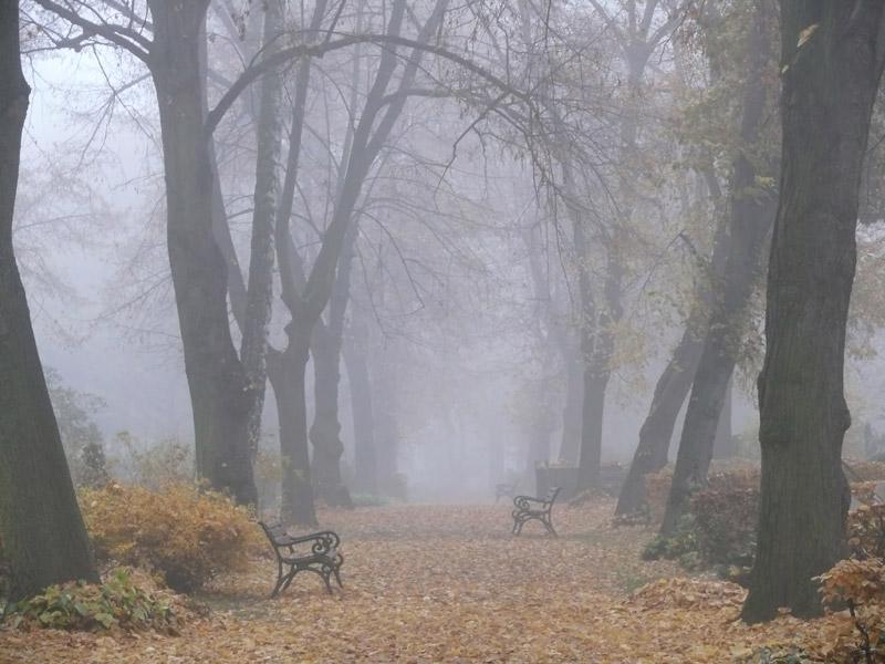 Herbstdepression oder Herbst Blues - die kalte Jahreszeit ist Schuld...