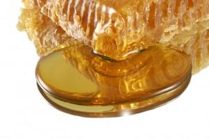 Honig hilft oftmals besser bei der Wundheilung  als Antibiotikum.