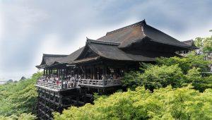 Innerlich und äußerlich angewendet oft ein wirksamer Helfer: Japanisches Heilpflanzenöl