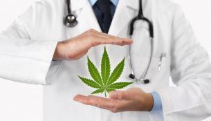 Cannabis als Medizin - apotheken-wissen.de